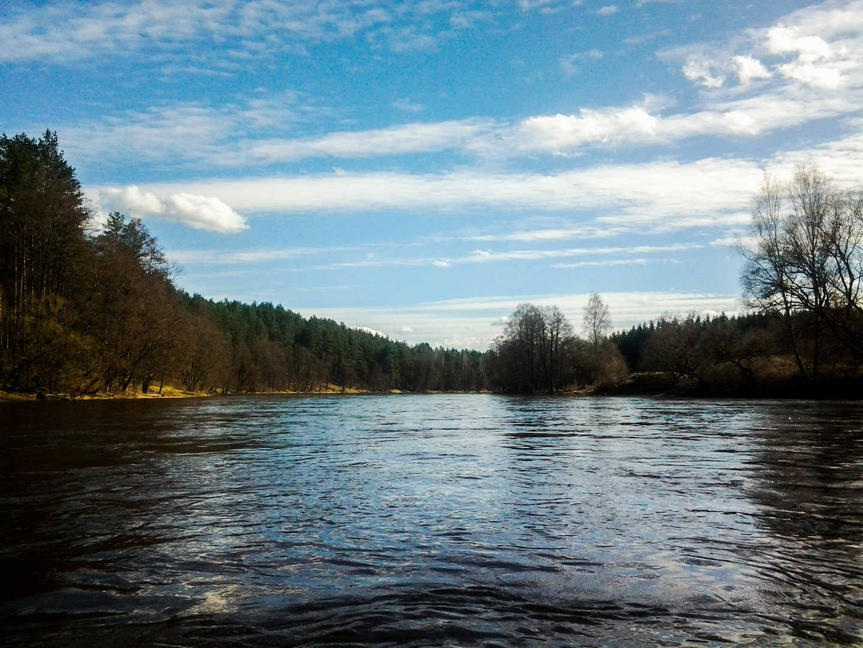 Neries upė
