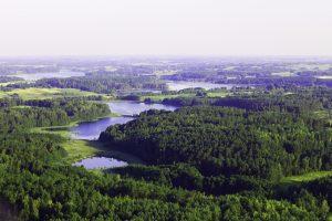 Baidares Vilniuje nuostabioje gamtoje